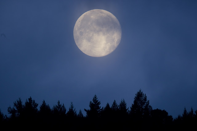 Cold Moon Over Vancouver Island