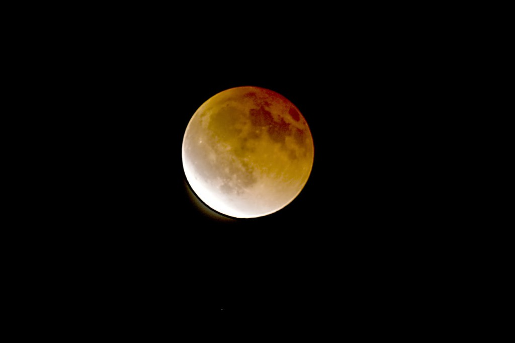 Lunar Eclipse 1:20 AM April 15