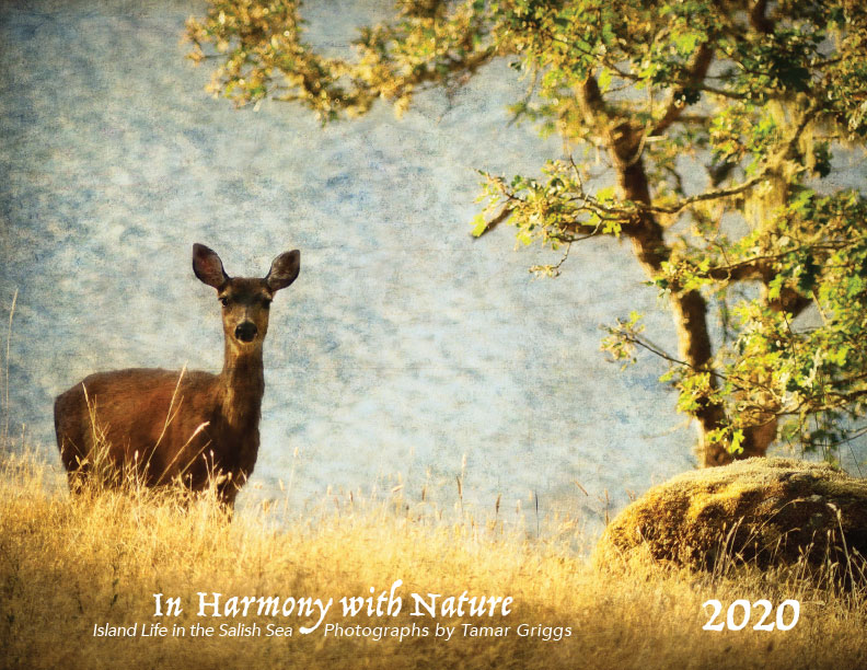"""In Harmony with Nature"" 2020 calendar"